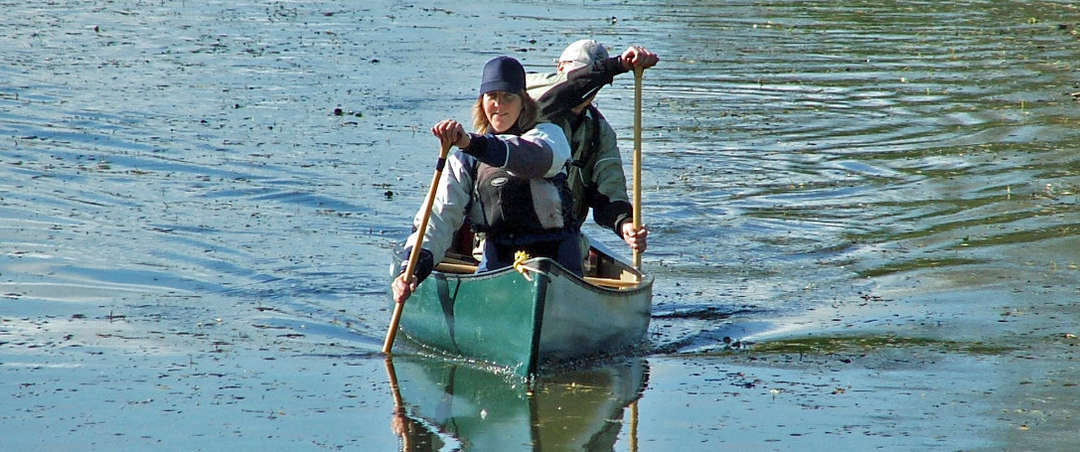 Guided open canoe trips - Yalding